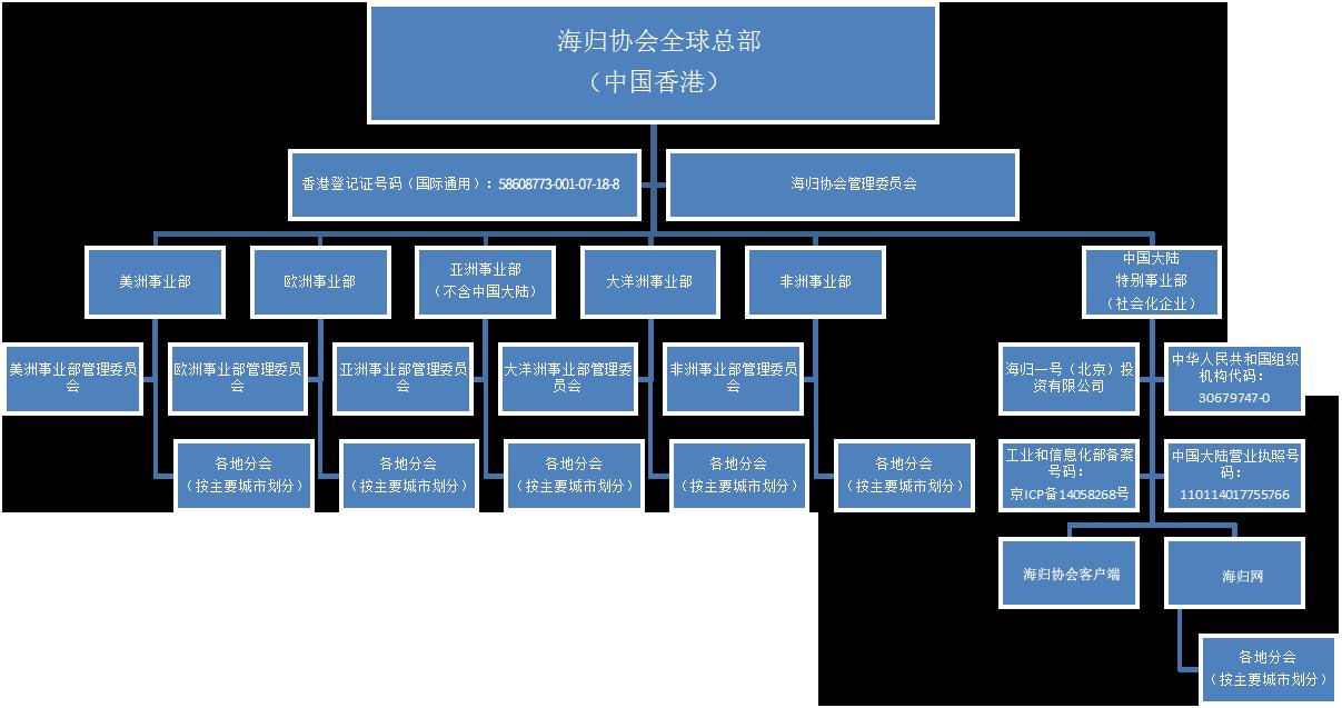 中国青年海归协会组织架构图